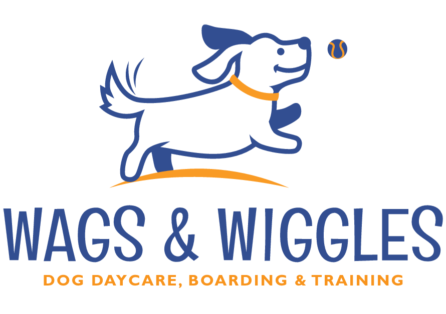 Employment Opportunities | Wags & Wiggles Dog Daycare