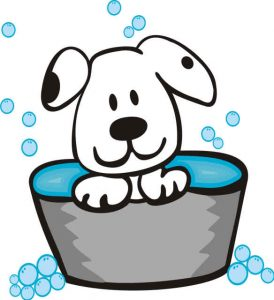 Dog Bathing Services - Wags & Wiggles Dog Daycare