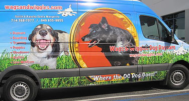 Dog Pickup and Dropoff - Wags & Wiggles Canine Transportation Van