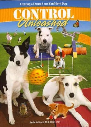 Zen Dog Training Classes - Wags and Wiggles