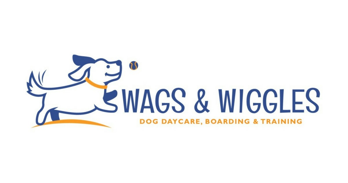Orange County Dog Training, Daycare, & Boarding | Wags & Wiggles